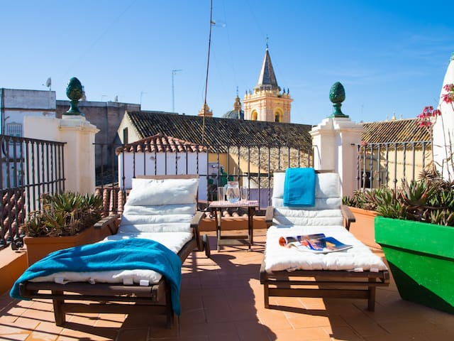 Fantastic house +terrace in the center of Seville.