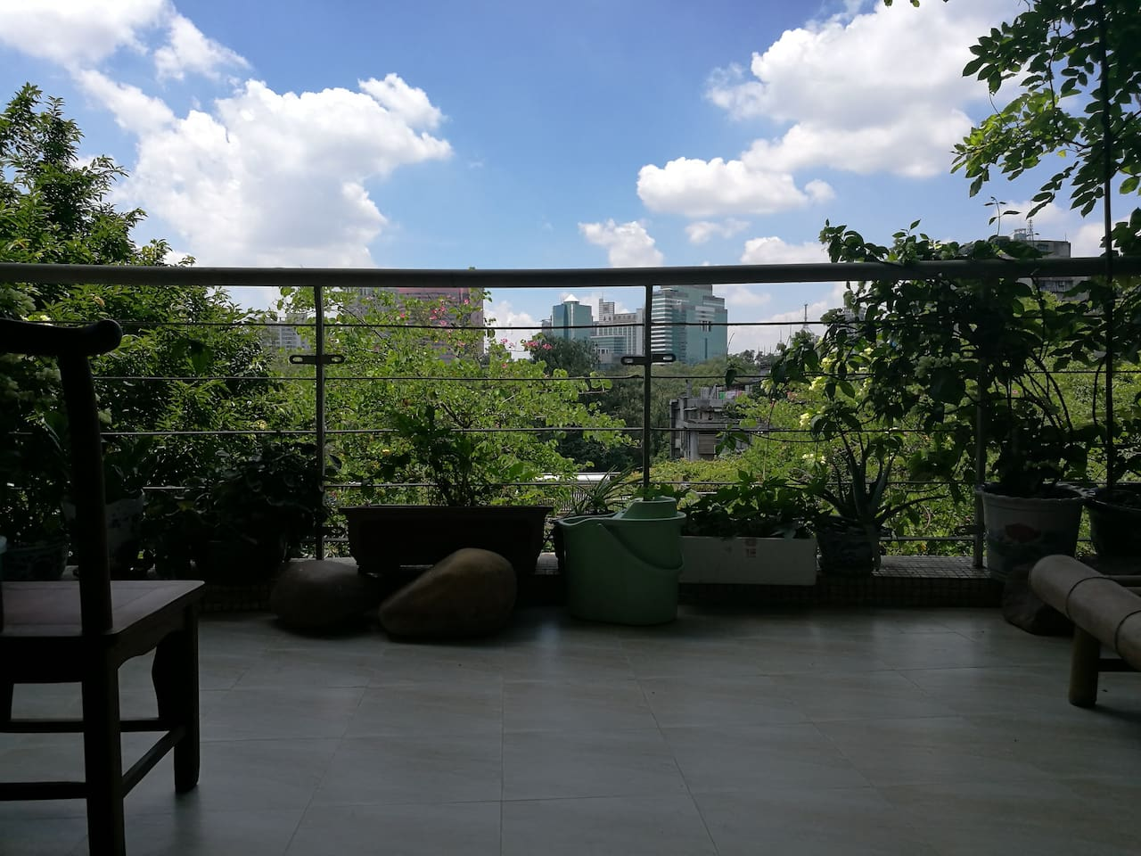 view from my balcony, face to huang hua gang park  我家的阳台观景,南向黄花岗公园