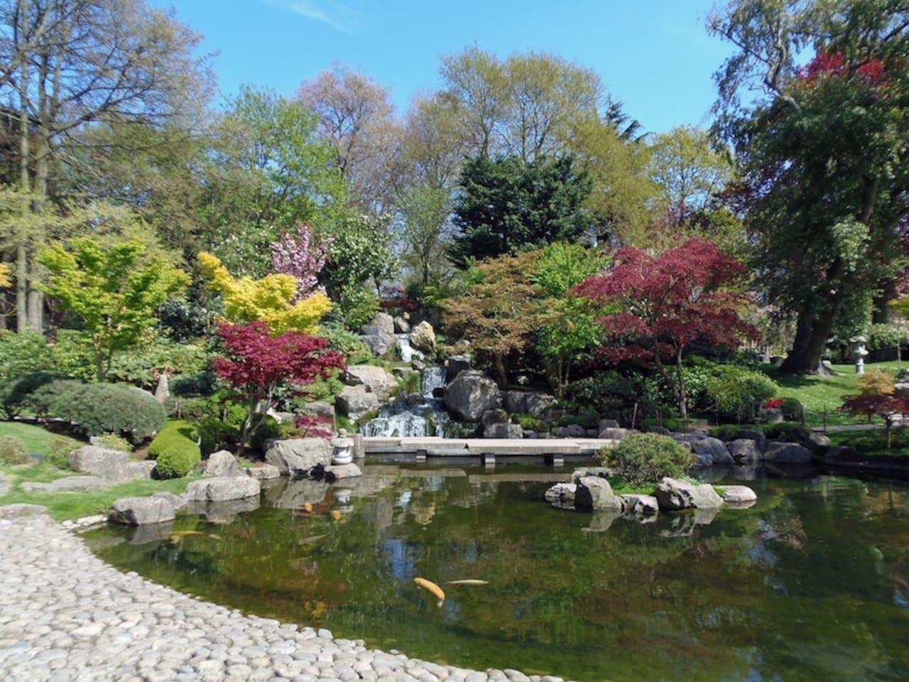 Kyoto Garden in nearby Holland Park