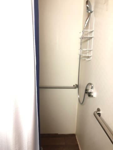 Full size walk-in shower with hand rails...Handicapped accessible