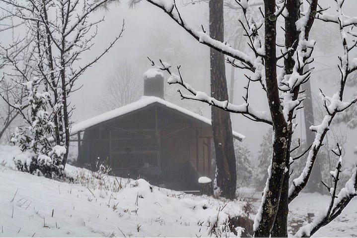 At Kaaphal hill, our guests are served home cooked organic foods.  This is our kitchen, shrouded in snow.
