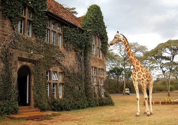 Giraffe Manor - ไนโรบี