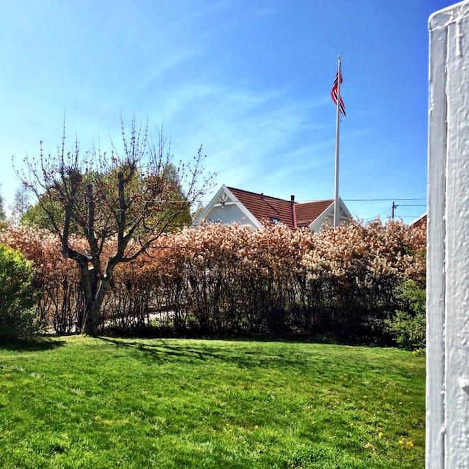 Romslig og solrik hage med hagemøbler til 6 personer