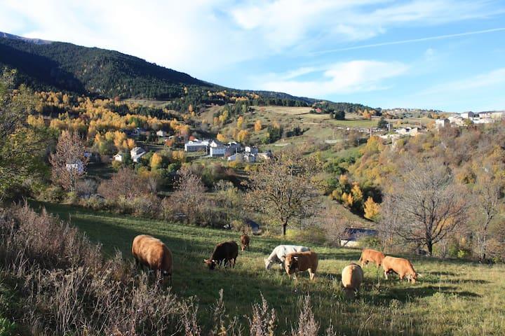 GÎTES À LA FERME - Pyrénées catalanes - Montagne 1 - Planés - Wohnung