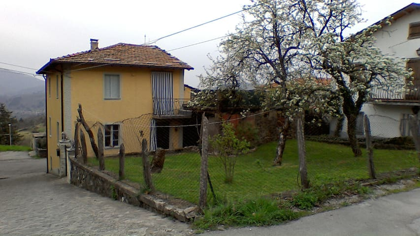 Back of the house with garden and upper terrace