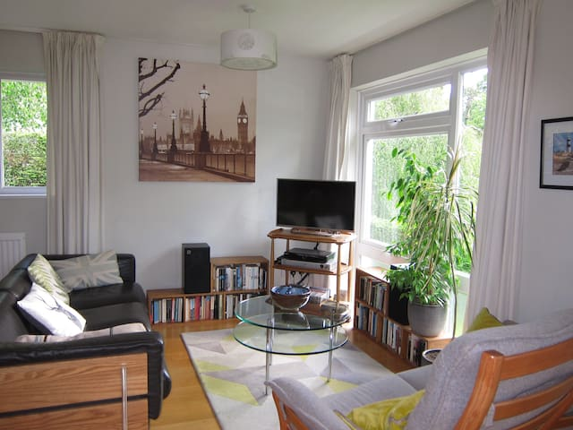 Stylish mid-century modern one-bed house SE21