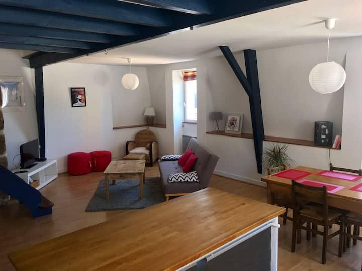 Bel appartement duplex  85 m² grand et lumineux