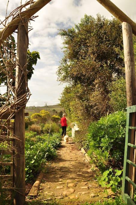 The pathway through the garden to the private farm house entrance.