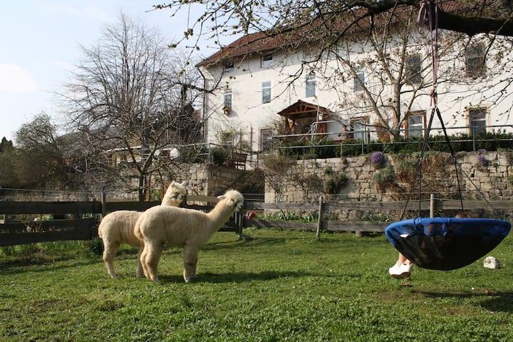 Urlaub auf dem Bauernhof mit Schlossblick