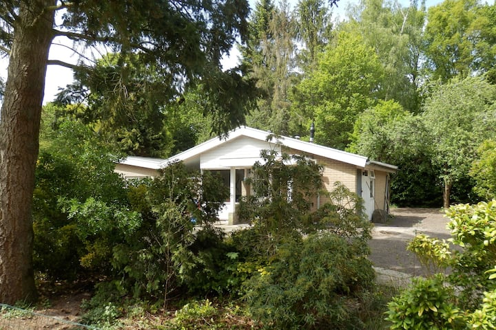 Beautiful Holiday Home in Balkbrug with Terrace and Garden
