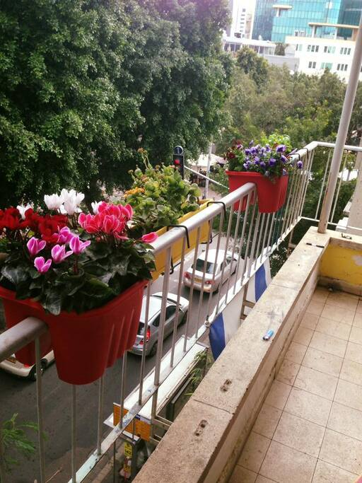 privet balcony from the room watcing to the blvd