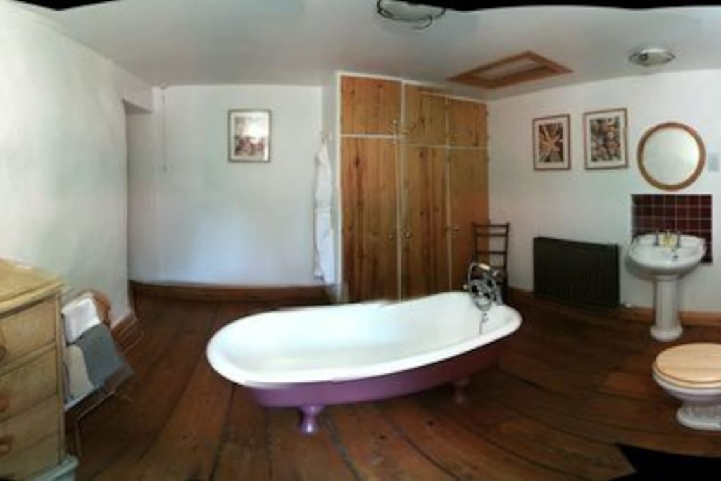 Panoramic picture of bathroom (slightly misshapen)