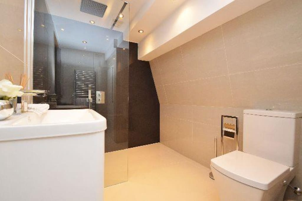 Walk in shower room/toilet 1