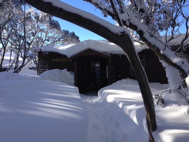 Kongoola Lodge: Single Bed b
