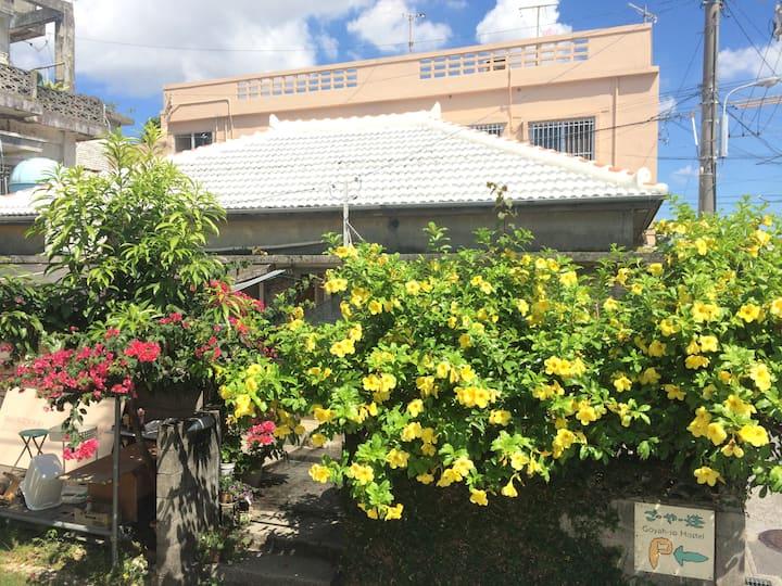 ごーやー荘-沖縄文化体験の入り口 Goyah-so Minsyuku hostel