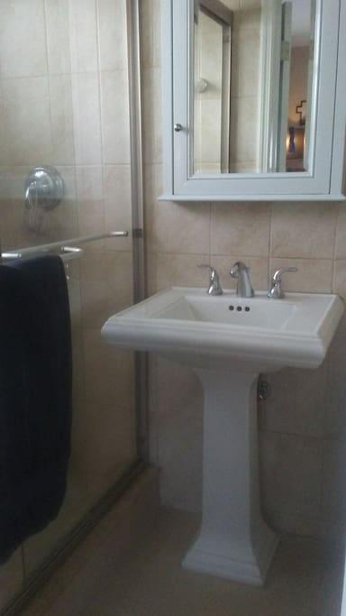 Bathroom w Shower