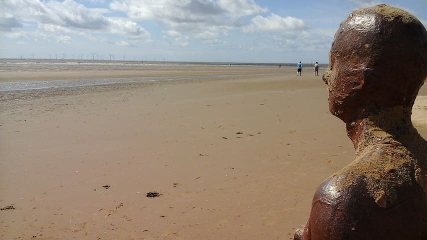 1 of 100 Iron Men stretched along 3km of Crosby beach.