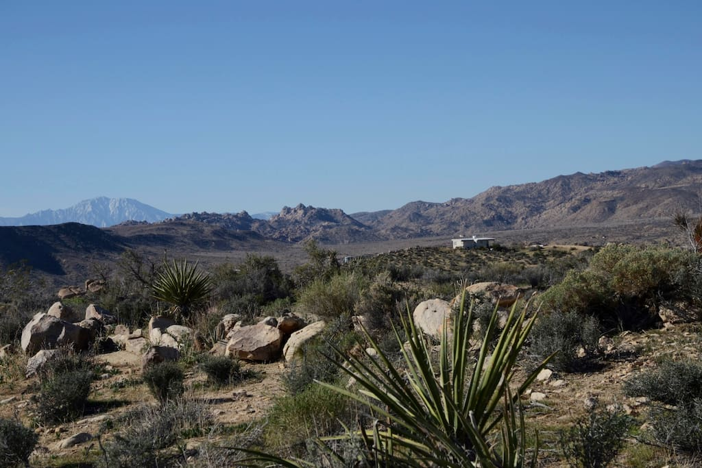 That's Mt. San Jacinto over 50 miles away. Great view of Los Vientos Hideaway's hilltop location.