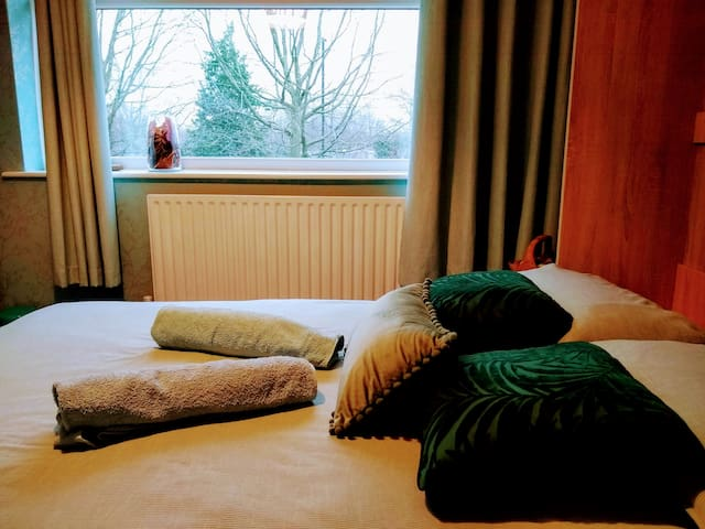 bedroom : green view