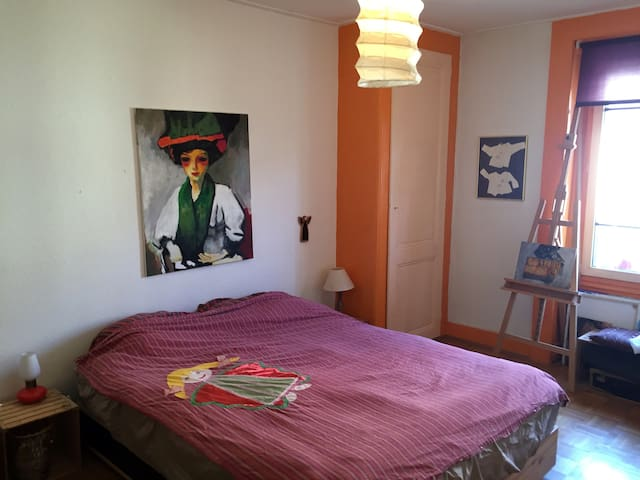 Charming 3 roomed apartment - Genève - Apartment