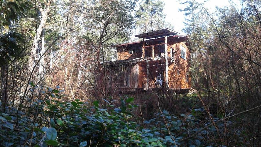 Rustic off-grid gulf island cabin - Gabriola - Huis