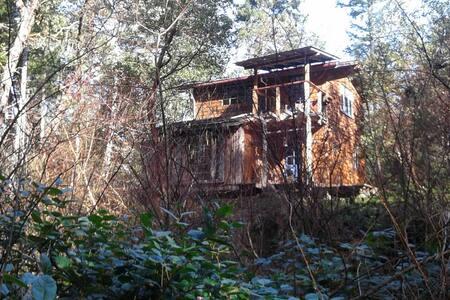 Rustic off-grid gulf island cabin - Gabriola - House