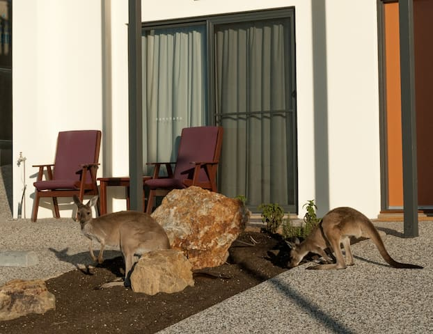 Rabans Retreat - Normanville - Serviced apartment