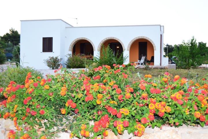 """Villa"""" La Carusa"""" Pescoluse /Salve /Salento/Puglia"""