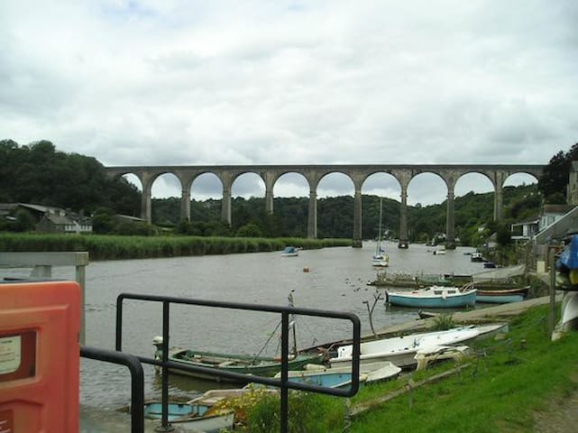 The Tamar Valley railway line scenic route into Plymouth one not to miss.