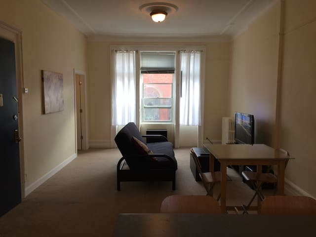 Large, Sunny, Williamsburg 1 bedroom Apt