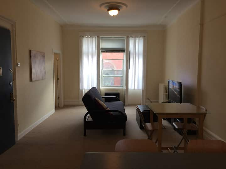 Amazingly Large, Sunny, Williamsburg 1 bedroom Apt