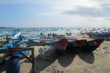 Visit around: Jimbaran fish market