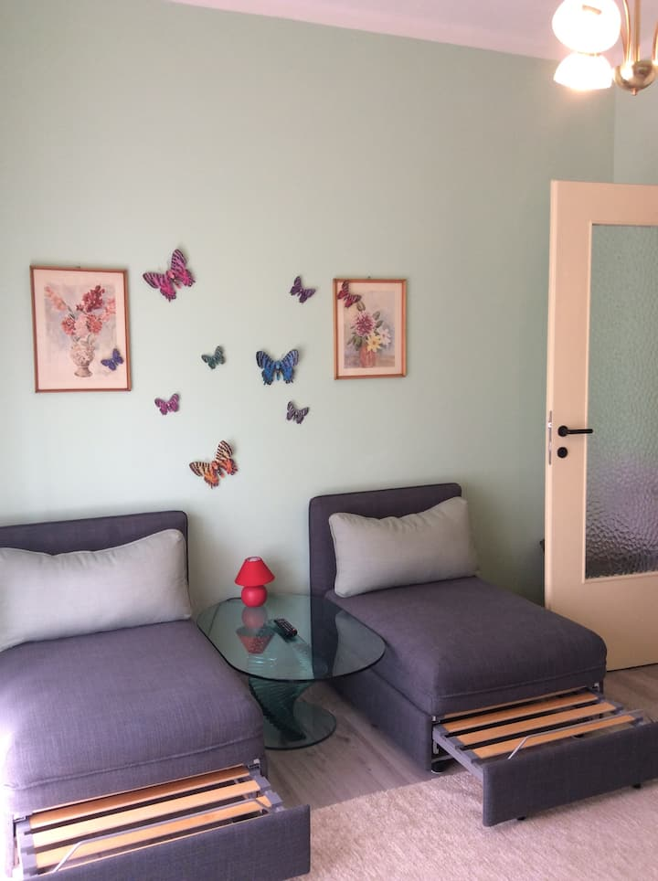 I offer rent 1 newly furnished double room.
