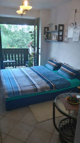 Double bed room - Cracovia - Casa
