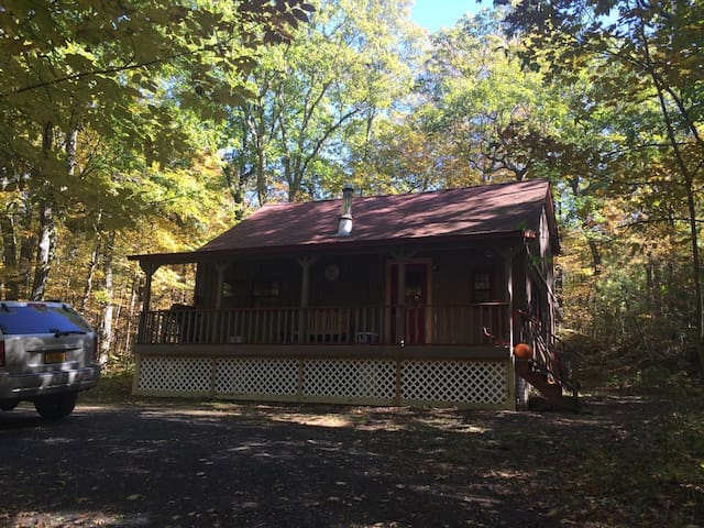 Cabin in the Woods - Catskill - Hus