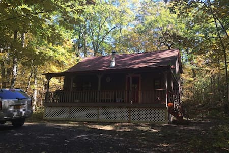 Cabin in the Woods - Catskill - Huis