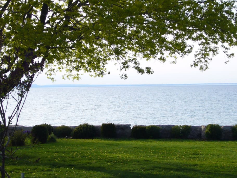 Backyard by Lake Ontario