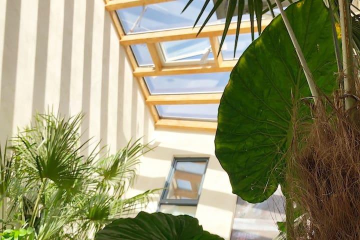 Top  Apartment mit Regendusche u. Dachterrasse