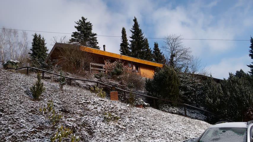 Uniek uitzicht en rustig gelegen - Willingen (Upland) - Casa