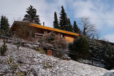 Uniek uitzicht en rustig gelegen - Willingen (Upland) - House