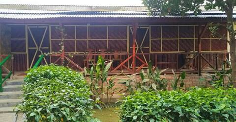 Woodpecker cottage. Longchen Homestay Dimapur.