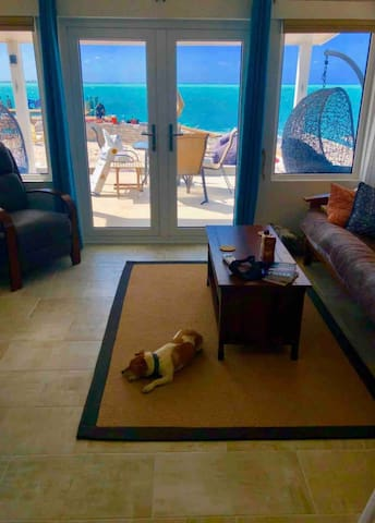 The view of the ocean through the front doors of the living room.