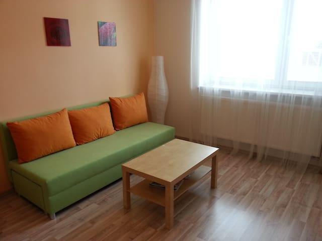 Pohodlí v klidném domě/Calm place - Brno - Apartment
