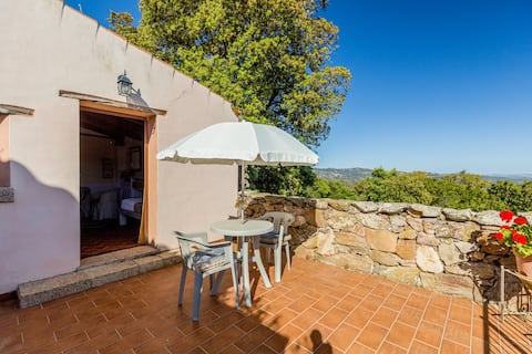 Flat room in the middle of Gallura's country side
