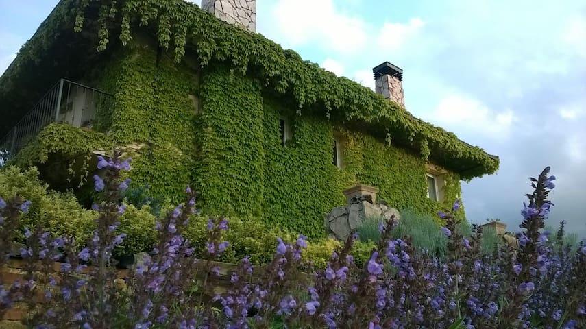 Casa en entorno natural en el centro de Asturias. - Comarca del Nora - Talo