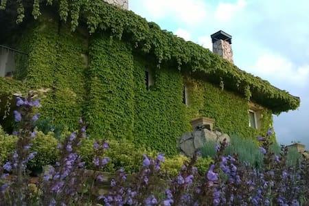 Casa en entorno natural en el centro de Asturias. - Comarca del Nora - Dom