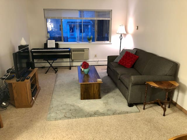 1 Bedroom Apartment in Milwaukee's East Side