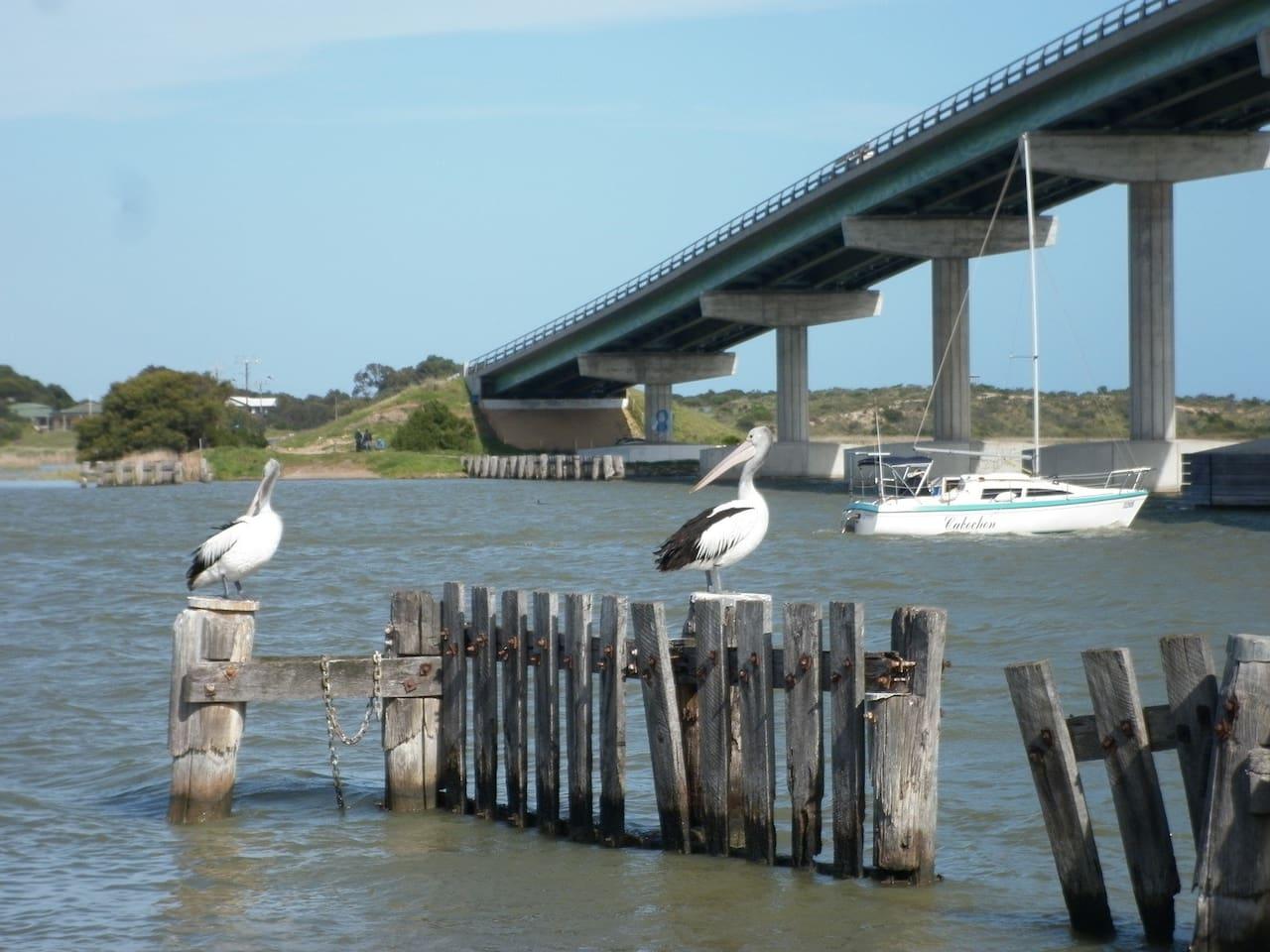 Bridge across The Murray River to the Island