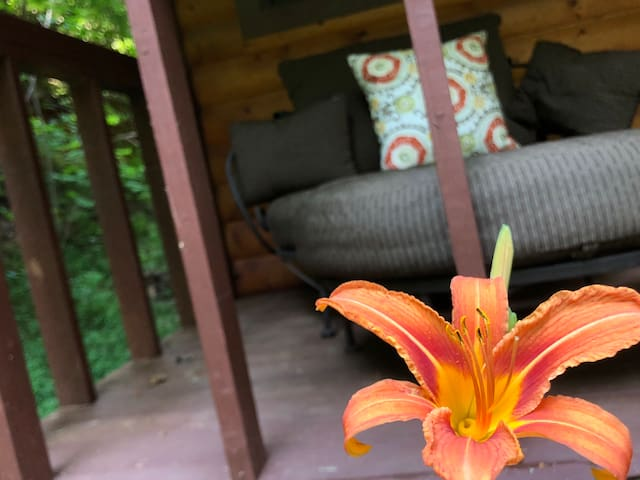 Tiger Lily flower with our comfortable lounging chair on the covered front porch.