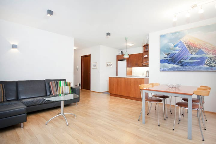 Beautiful apartment in heart of rey apartments for rent for Rey apartments reykjavik